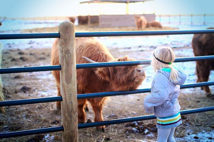 Jennie's precious daughter, thankful the Priefert Ponderosa Fence is keeping her safe!
