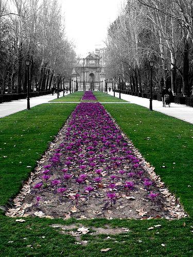 Este es una parte diferente a el Parque Buen Retiro. Este es Avenida de México mirando hacia la Puerta de Alcalá.