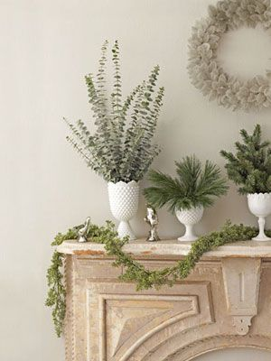 Holiday Greenery, simple and elegant.  Use floral foam in bottom to keep branches upright