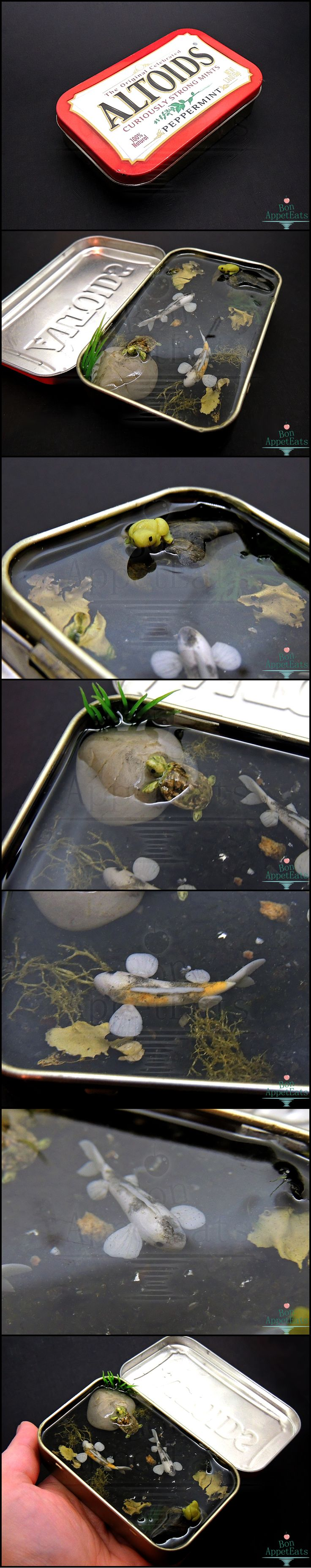 614 best images about mini stuff on pinterest for Fish pond stuff