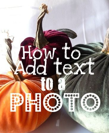 How to add text to a photo. (Exactly what the photo says. )