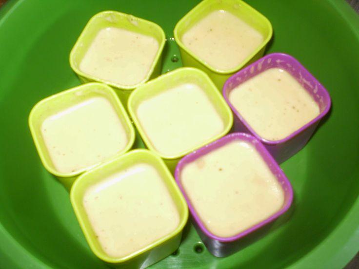 LES FOURNEAUX DE PHILO: crême à la vanille au micro vap
