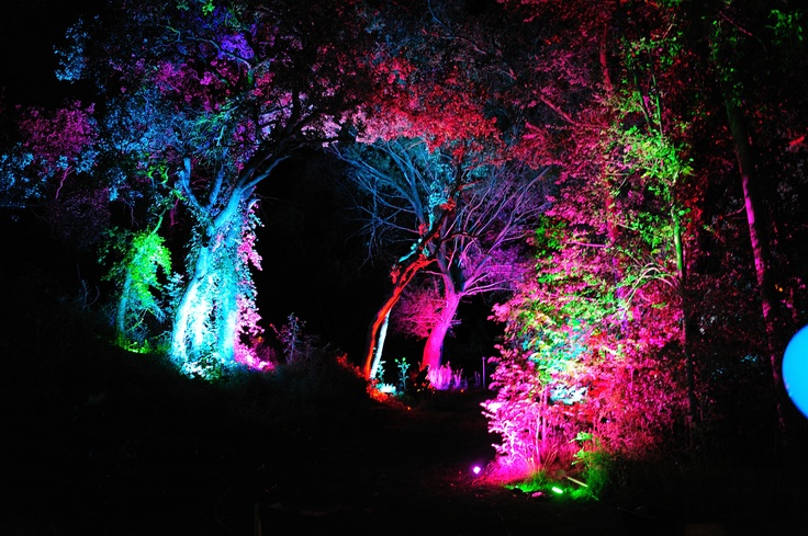 Electric Run - March 30th. Night time run looks amazing! Can't wait for team CPSC!!