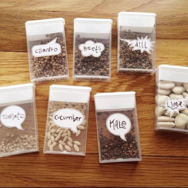 Do you have seeds from your garden (vegetable or plant) that you want to store for next year? Here is a great idea for storing those seeds and keeping them organized! You can reuse any small sealable container such as a tic tac box, altoids, etc. Great idea!