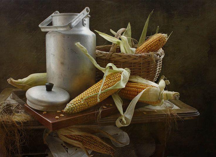 photo: про кукурузу | photographer: inna korobova | WWW.PHOTODOM.COM