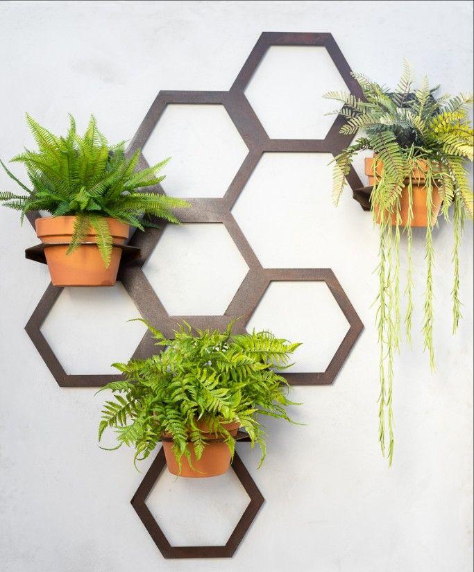 Pin By Meenu Kohli On Trills Garden Wall Planter Wall Plant