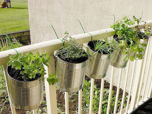 can-planters.jpg 500×375 pixels