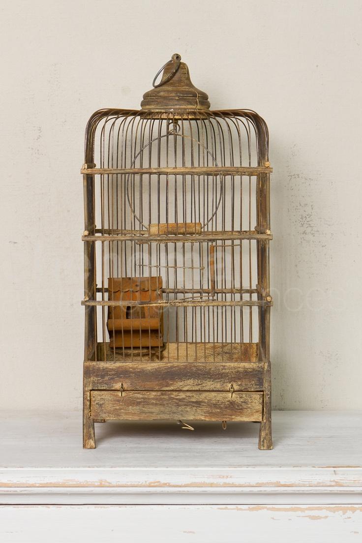 Cage à oiseaux patine