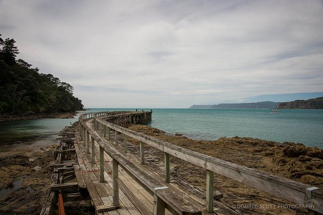 Old Wharf - Hicks Bay East Cape NZ    Flickr - Photo Sharing! by Dominic Scott Photography