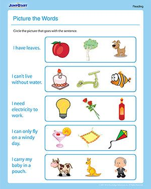 Reading Worksheets for 1st Grade | Picture the Words - 1st Grade Reading Worksheet