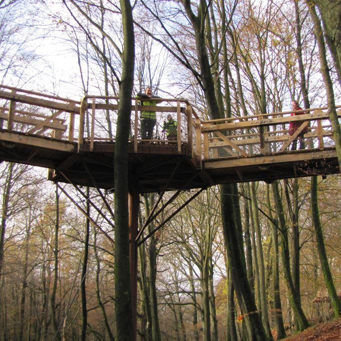 Promenera uppe bland trädtopparna i Fulltofta i Hörby.