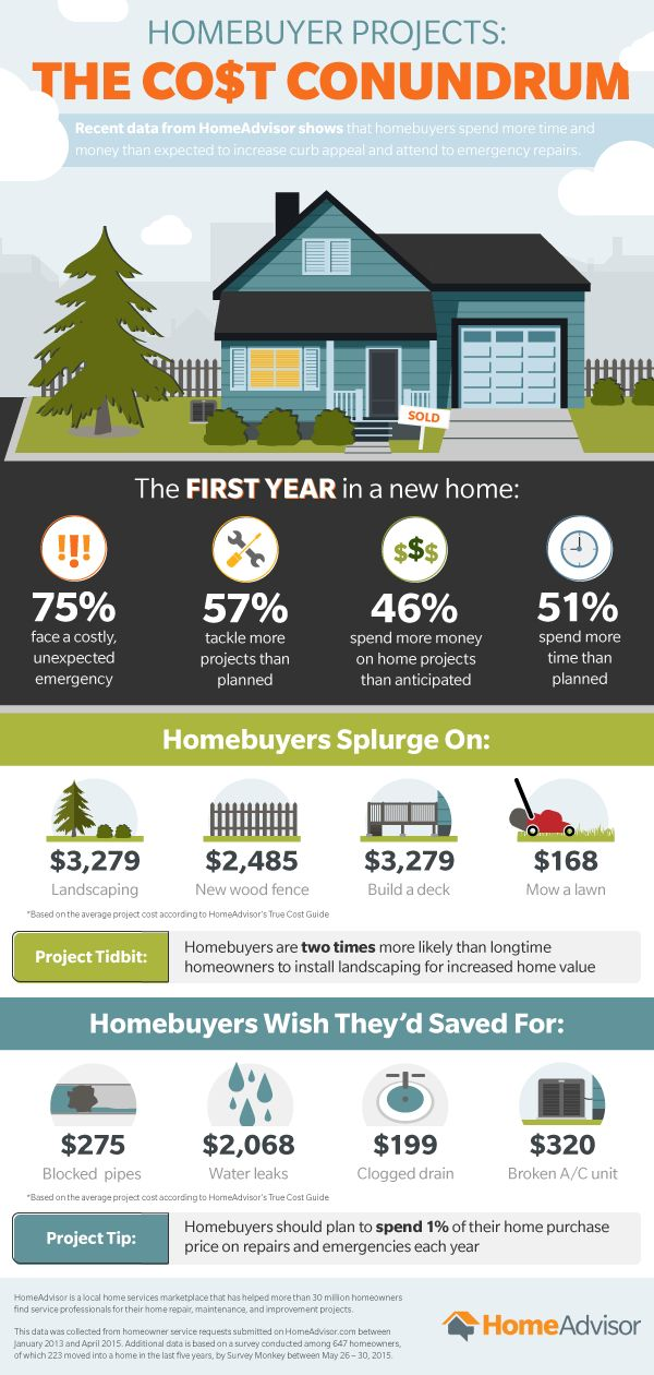 [INFOGRAPHIC] Top Spending Mistakes of New Homeowners — RESAAS Blog