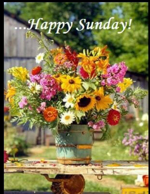 Happy Sunday My Facebook Friends   Happy Sunday