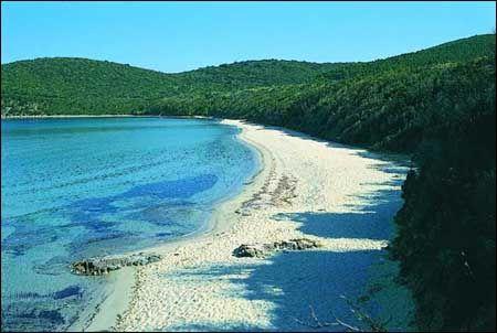 Cala Violina eine der schönsten Buchten im Golfo di Follonica. Leider (oder zum Glück) nur zu Fuß erreichbar.