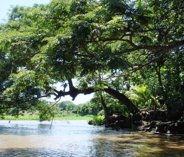 Lake Nicaragua (Lago de Nicaragua) Photos: Lake Nicaragua: Uninhabited Isletas