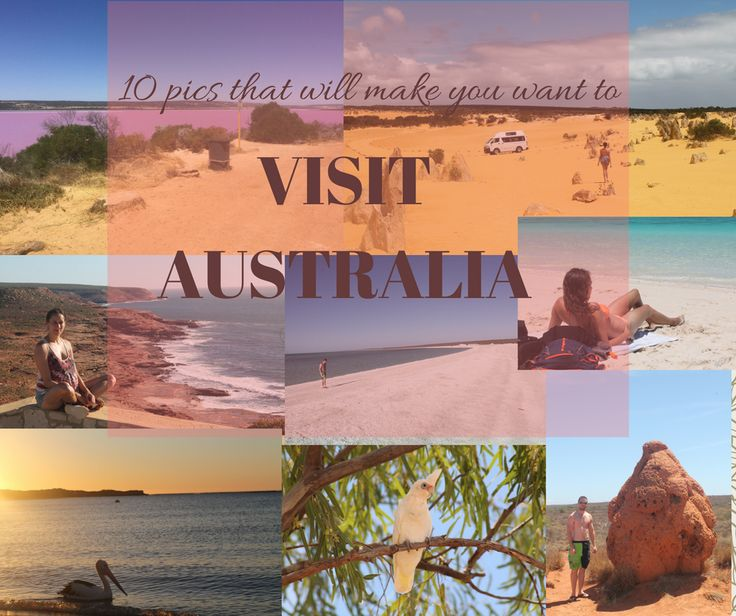 10 pictures that will inspire the wanderlust in you to visit Australia Now. From beautiful beaches to the cutest marsupial you have ever seen, join us on our roadtrip exploring Australia
