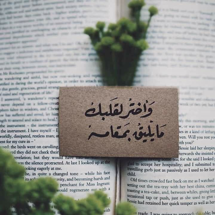 Pin By Zino On Arabic Photography Love Quotes Social Quotes Words Quotes