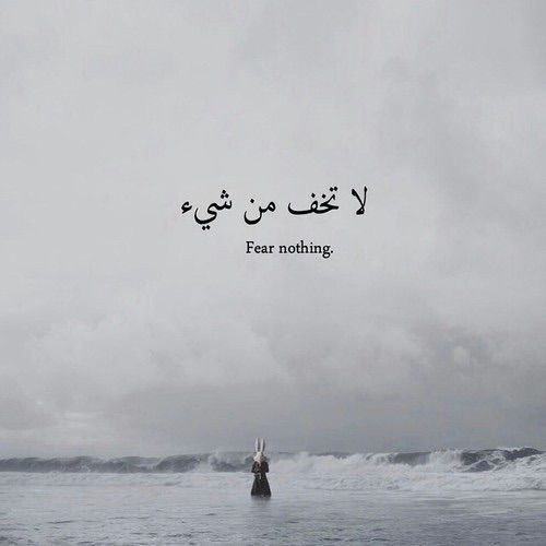 Image via We Heart It https://weheartit.com/entry/149041794/via/2168320 #arab #arabic #english #fear #life #nothing #phrase #quotes #say #saying #text #words