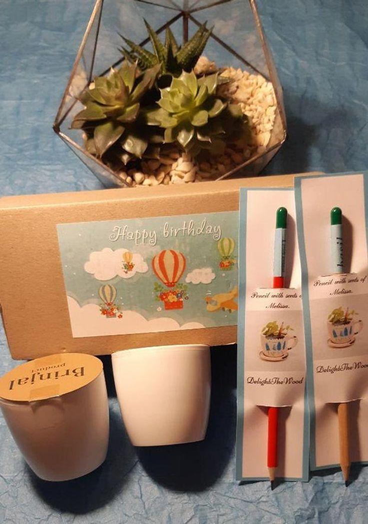 Kids Garden Kit Childrens Garden Seed Kit Grow Your Own Garden Diy