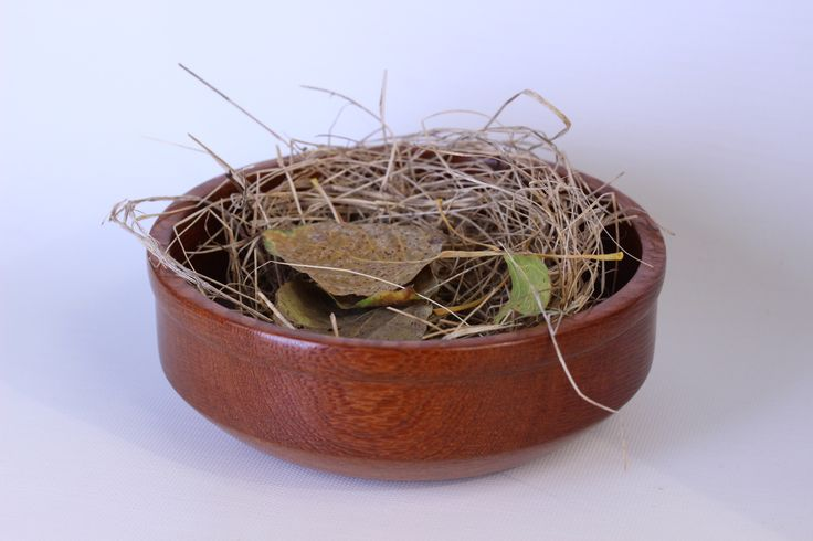 4 inch lacewood bowl with bird nest