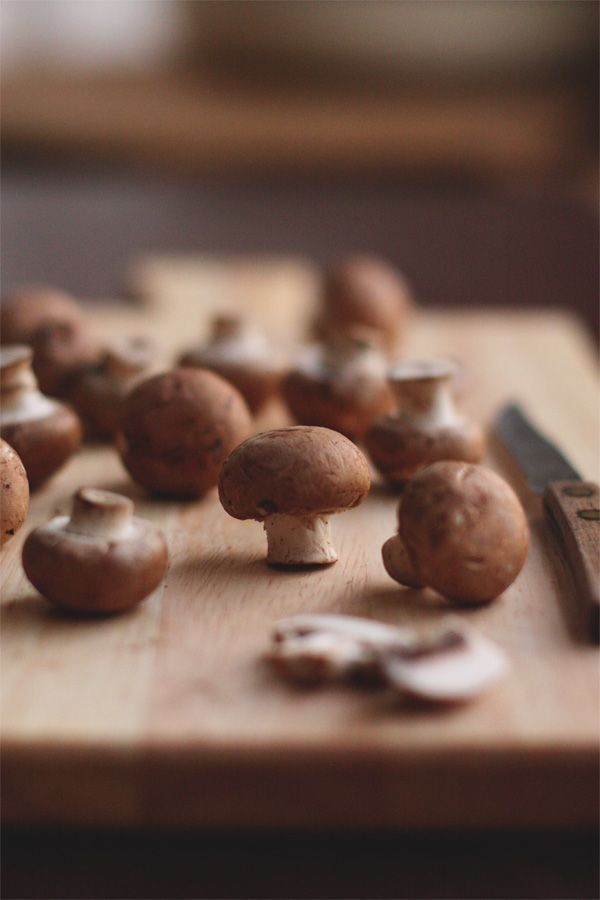 Food photography Swiss Mushrooms #brown #photography #light
