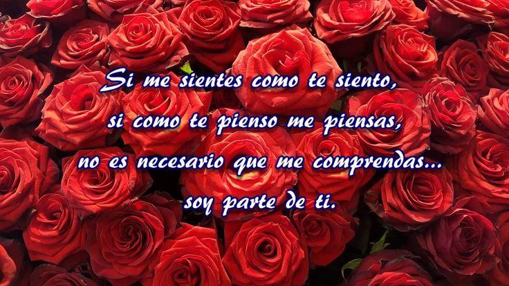 TE AMO  solo necesito decirte que te amo con las mas Hermosas y dulces F...