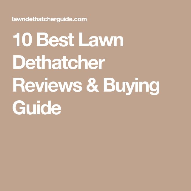 10 Best Lawn Dethatcher Reviews & Buying Guide