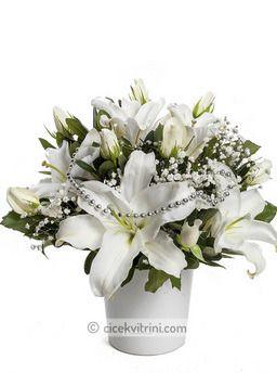 Beyaz Asalet çiçek http://www.cicekvitrini.com/cicekler/cicek-siparisi-ver