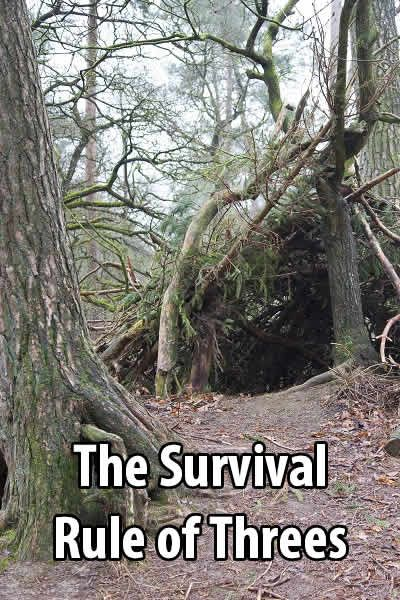 The Survival Rule of Threes