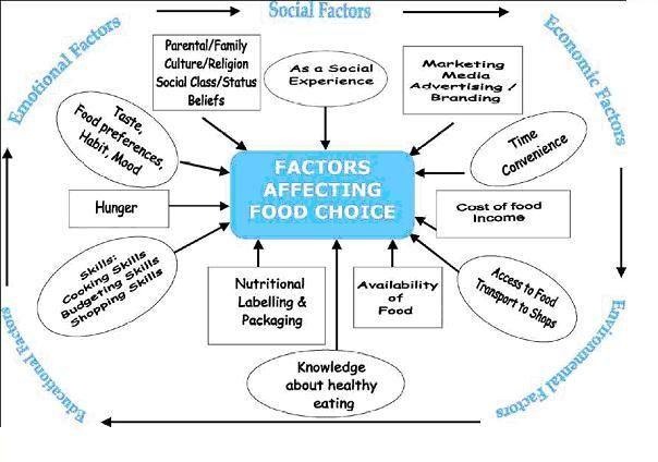 food choice factors - Google Search