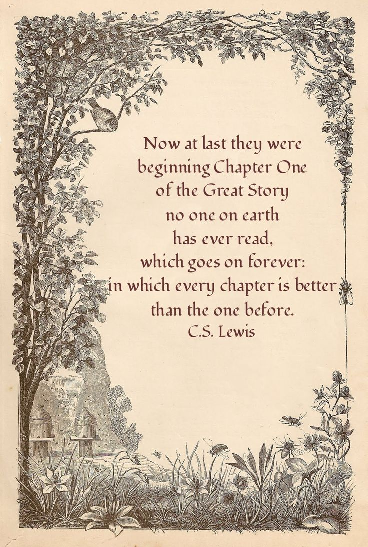 What a great quote for a wedding programe quote says Now at last they were beginning Chapter e of the Great Story which no one on earth has read