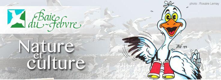 Center d'interprétation de l'oie des Neiges avril = 35,000 oies !