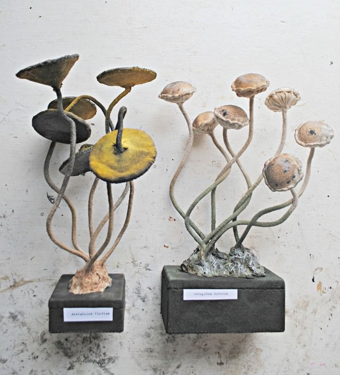 New toadstools for Etsy on sale Friday