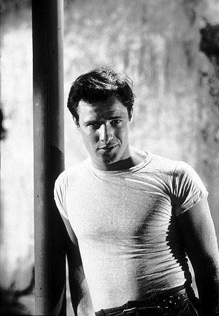 expressionism in a street car named desire In a streetcar named desire, williams felt like he could identify with many of the characters in the play blanche showed a lot of delicacy, loneliness, sensuality and other characteristics the williams could relate with.