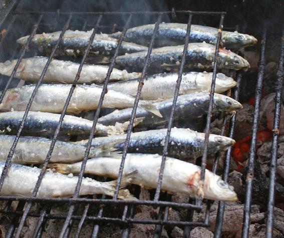 Sardinas a la brasa en Chiringuito Bombadill en Isla Canela (Ayamonte - Huelva)