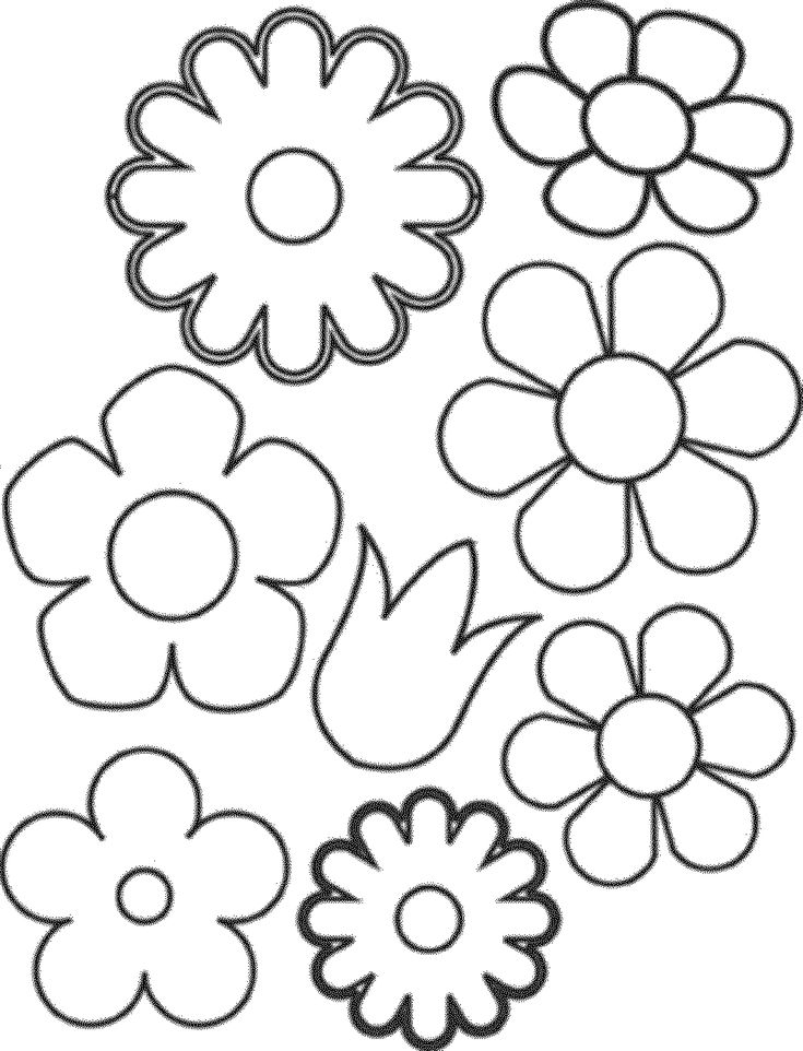 Colouring Pages Of Flowers And Butterflies : 38 best flowers to craft images on pinterest