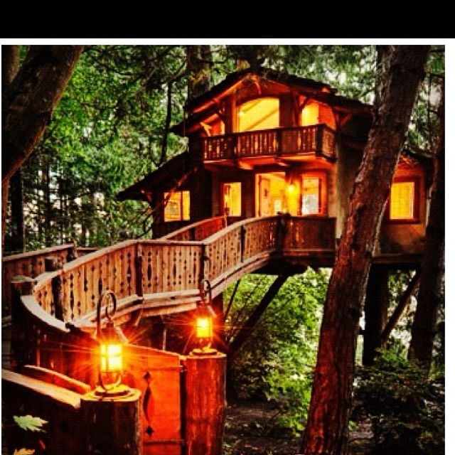 I would live to live in this kinda tree house