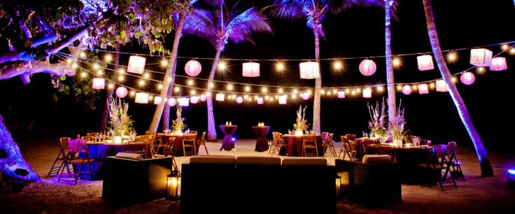 Uplighting is perfect for lighting up a #palmtree at an #outdoor event! Photo via #trustedhost #diy #rentmywedding #wedding #uplighting #diywedding #weddingideas #weddinginspiration #ideas #inspiration #celebration #weddingreception #party #weddingplanner #event #planning #dreamwedding