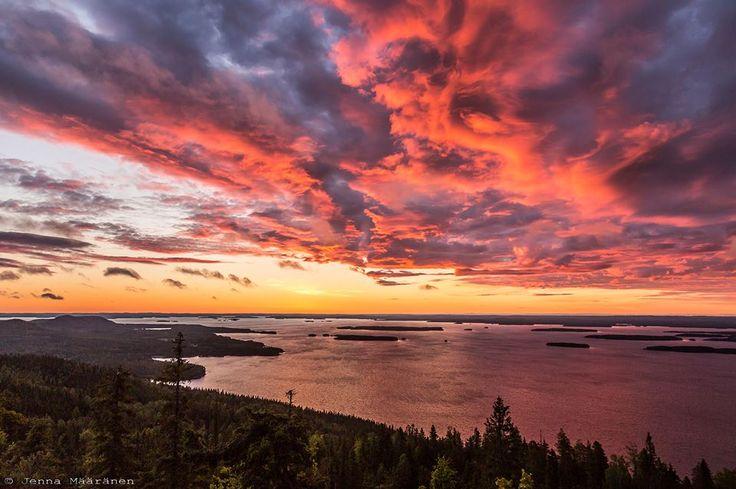Auringonnousu Kolilla. Kuva Jenna Määränen