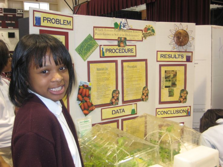 an analysis of the topic of the science fair project The conclusion in a science project summarizes the results of the experiment and either contradicts or supports the original hypothesis it is a simple and.
