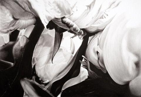 Hide & Seek A1 by Haywood   PLATFORMstore. Digital print on Photographique paper