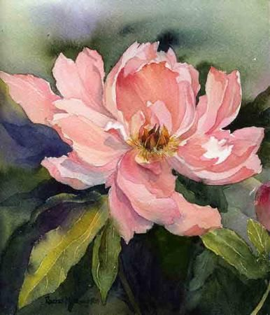 Peony, General, Rachel McNaughton, SAA Professional Members' Galleries