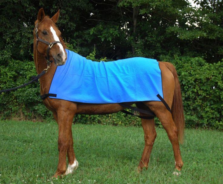English Tack Shop - Equi Cool Down Cooling Sheet, $209.95 (http://www.englishtackshop.com/horse-cooling-blanket/)