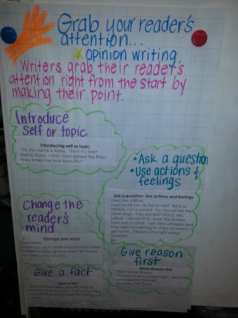 How do you make an introduction in an essay catch the reader's attention.?