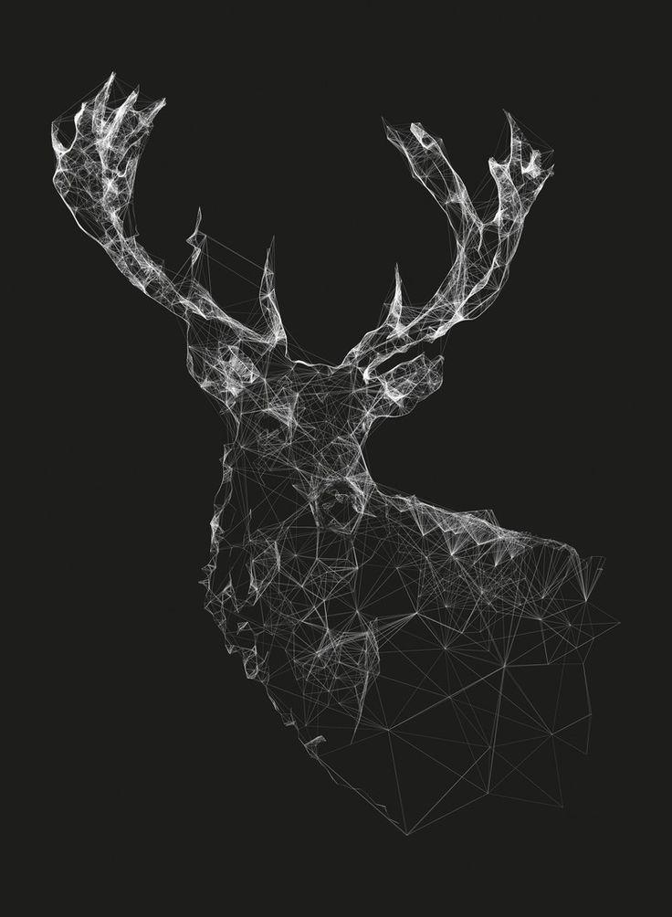 Louisiana Deer Map%0A Polygons