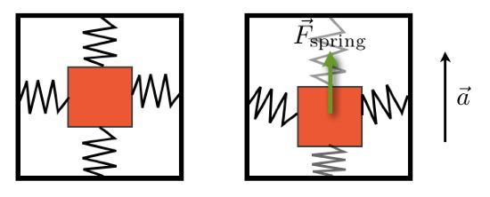 Phone Accelerometer -> Einsteins Equivalence Principle