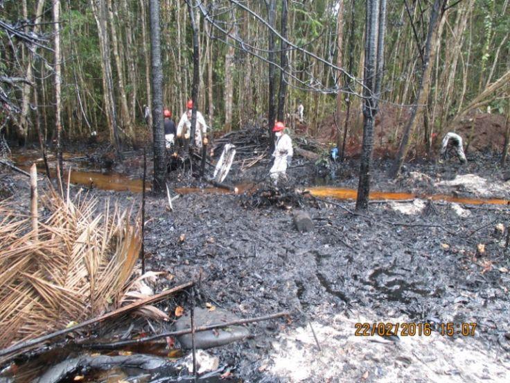 O solo contaminado pelo derramento de óleo no Mayoriaga.  Foto: Forest Peoples Programme