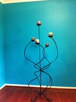 Magnificent Candle Tree (sydney gumtree)