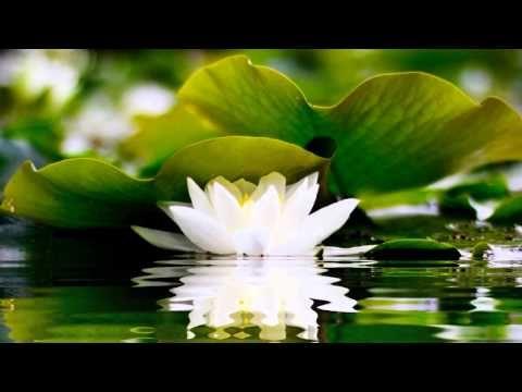 2 HOURS of BEST Buddha Meditation Song ❤ Buddhism Music, Buddhist Songs, Mantra, Zen, Yoga Music ❤ https://www.youtube.com/watch?v=REMDOgcoB8g