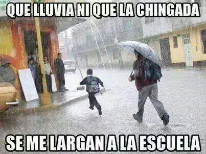 Los memes nuestros de cada día 84664473e82e845a63226430330299cb--mexican-american-mexican-humor